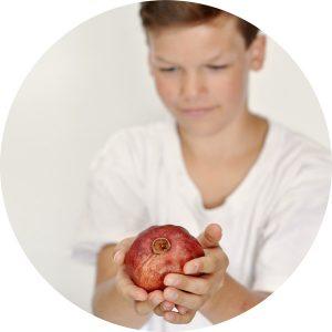 judentum_erleben_granatapfel
